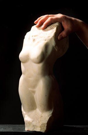 torso-hånd.jpg
